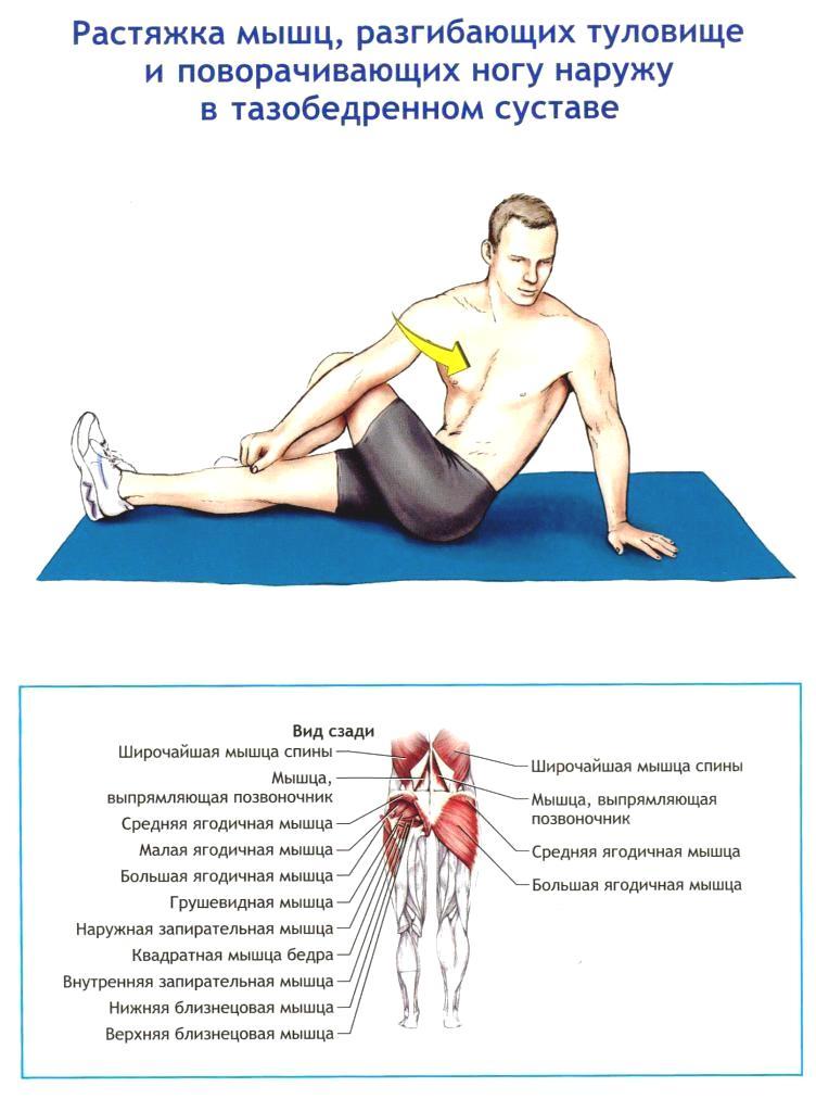 растяжка тазобедренного сустава в картинках некоторые